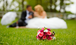Bride and groom sat on the grass